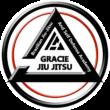 Youngstown Jiu Jitsu
